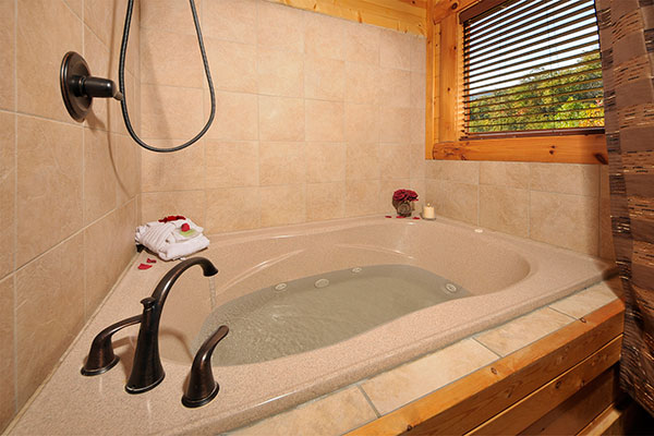 shower tub combo with jets. shower jet tub combo  photo above theater in the sky bathroom with jacuzzi Shower Jet Tub Combo Bathtubs Idea Spa Jacuzzi