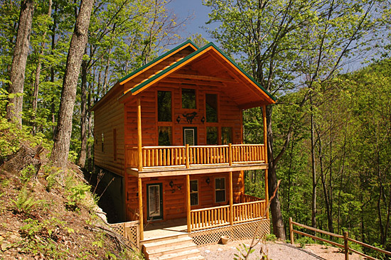 Wolf Den Beautiful 3 Bedroom Cabin With Movie Theater Hot Tub And Privacy